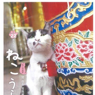ねこ写真家 関 由香写真展「ねこうらら」